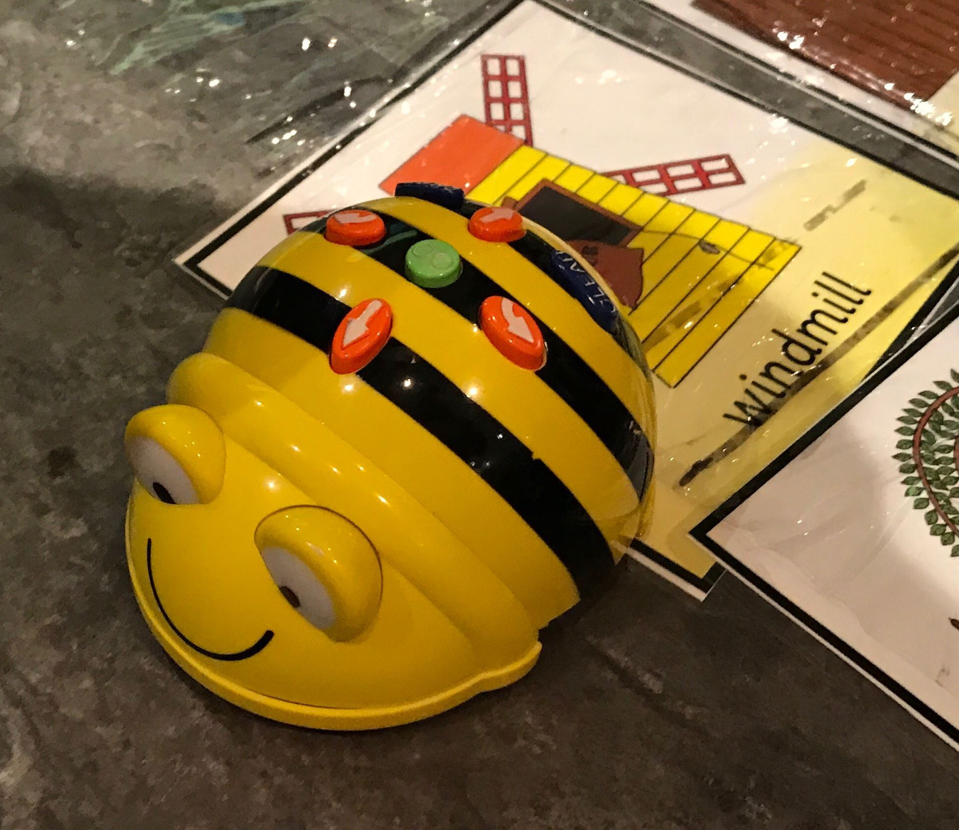 A Bee Bot sits on an activity tile